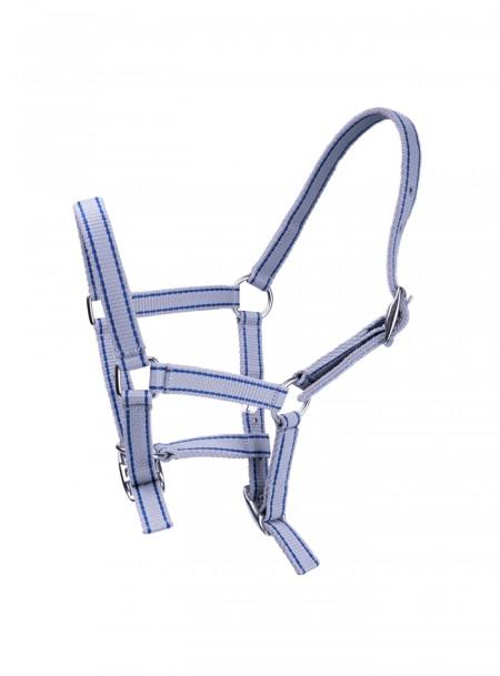 Недоуздок для маленького коня Minihorse г. Adult с никелированными пряжками  Фото