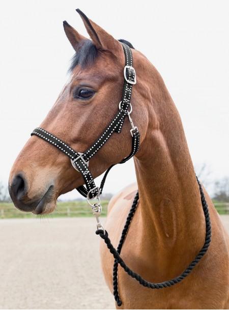 Недоуздок для коня з чомбуром Horze Фото