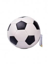 Іграшка дом.твар. CaniAMici м'яч футбольний м'який