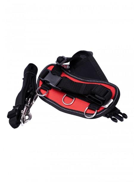 Червона шлея для собак зі зручним карманом та комплектним повідцем від ТМ CROCI Фото
