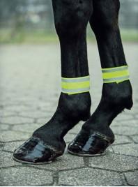 Світловідбиваючі бинти для ніг коня