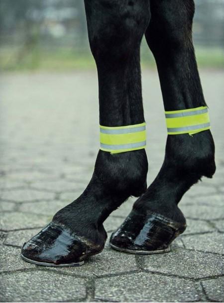 Світловідбиваючі бинти для ніг коня з неопрену та поліестеру Фото
