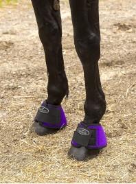 Кобури на копита коня NORTON з неопрену XL розміру Фото
