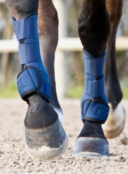 Ногавки парні в розмірі XL від компанії Horze Фото