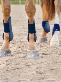 Якісні ногавки Fetlock Horze (Хорз) з м'якого неопрену та безпечного пластику Фото