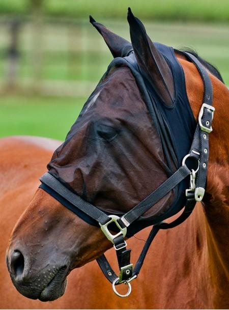 Захисний капор для коня від комах фірми Horze з 100% поліестеру Фото