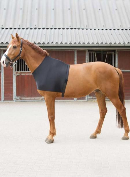 Нагрудна попона для скакуна від компанії Harry's Horse Фото