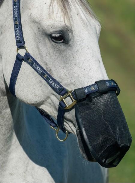 Сітчаста маска від мух на ніс коня Horze з 100% поліестеру в розмірі Pony Фото