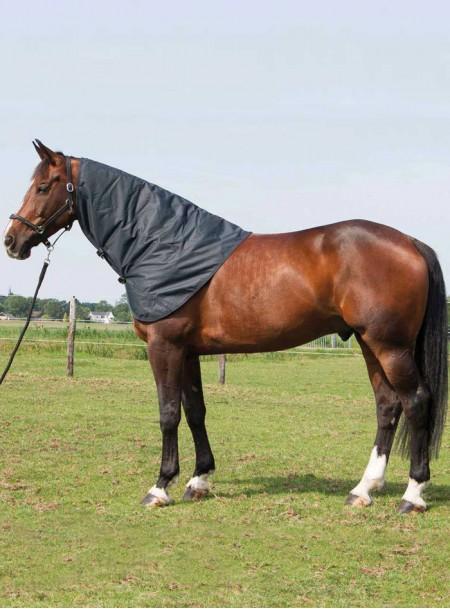 Попона на шию для скакуна від компанії Harry's Horse Фото
