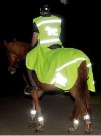 Захисна, світловідбиваюча попона на задню частину коня
