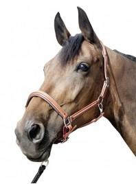 Недоуздок для коня HKM з м'якою носовою підкладкою Фото