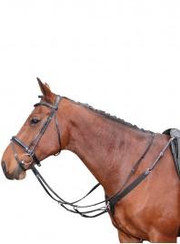 Мартингал Harry's Horse