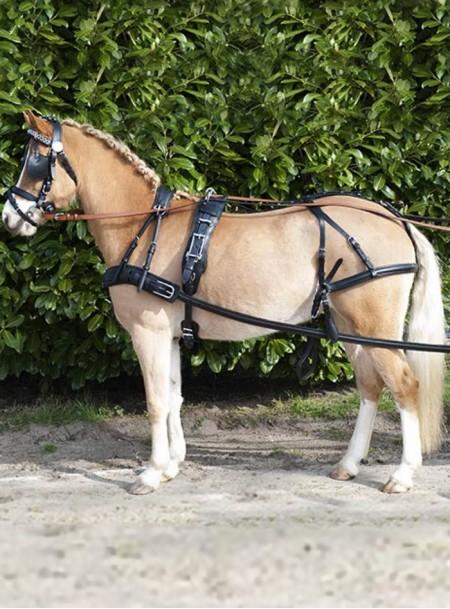 Преміальна упряж для коня HKM Diplomat в повному Full розмірі для щоденних тренувань та змагань Фото
