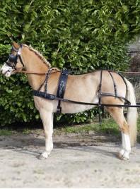 Упряж для коня НКМ Economic з 100% натуральної шкіри та пряжками з нержавіючої сталі Фото