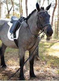 Недорогий вальтрап під сідло НКМ Pony на липучках Фото